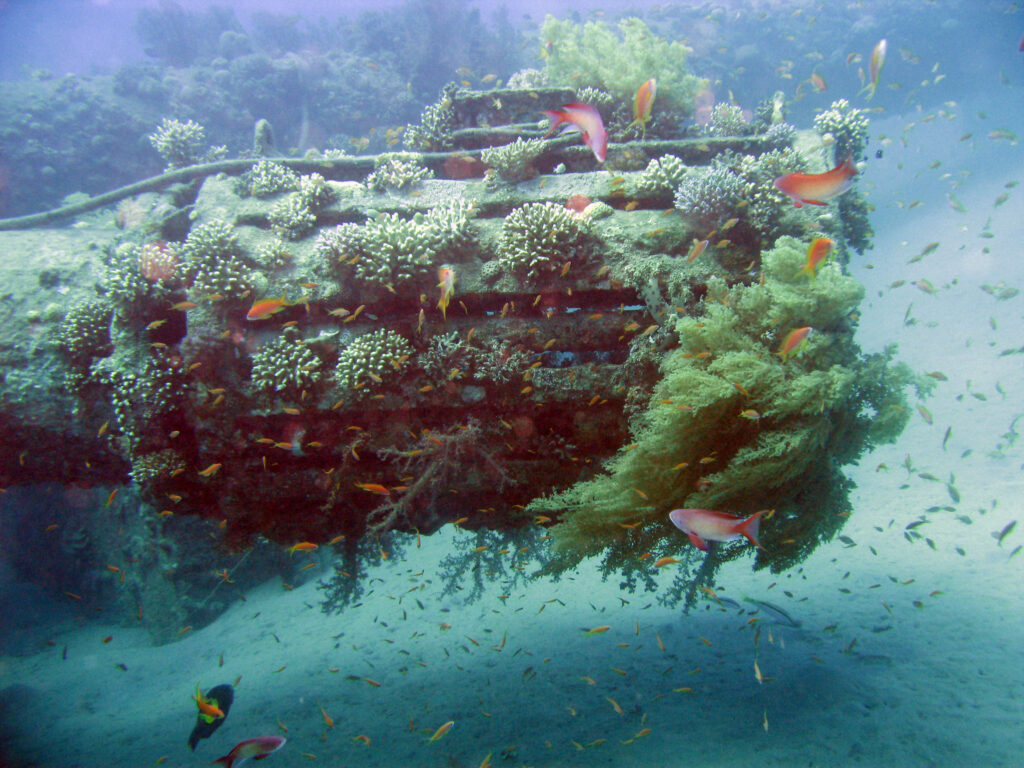 Human pressures on world's oceans show no sign of slowing