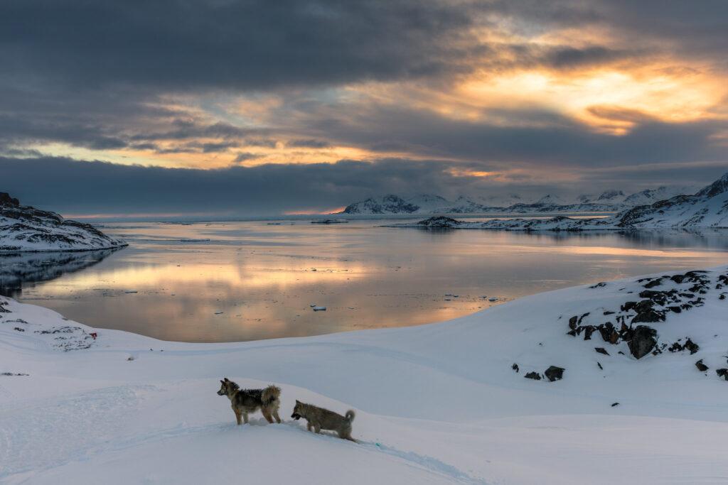 rapid arctic warming