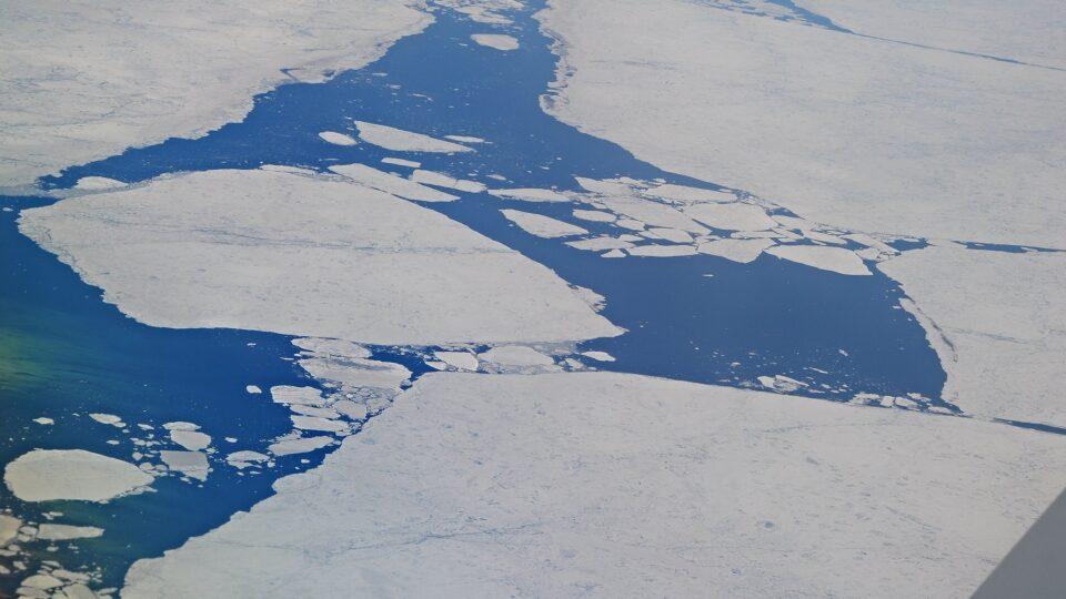 carbon in arctic coastal waters