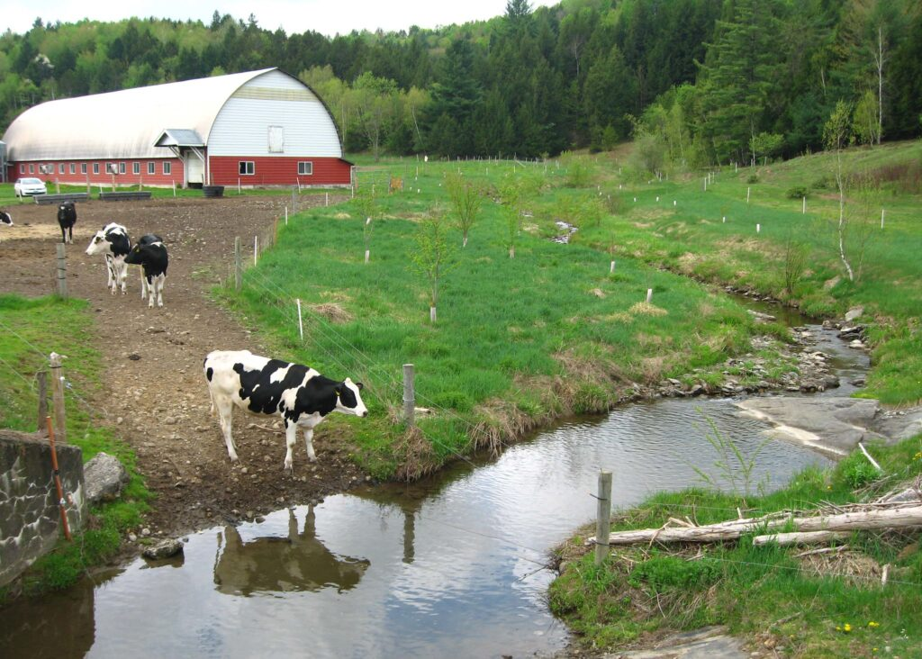 Forest Buffer Zones on Farms