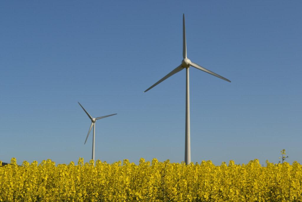 wind power is now top renewable