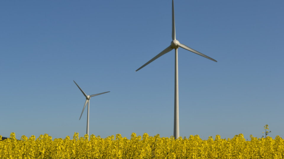 wind power is now top renewable