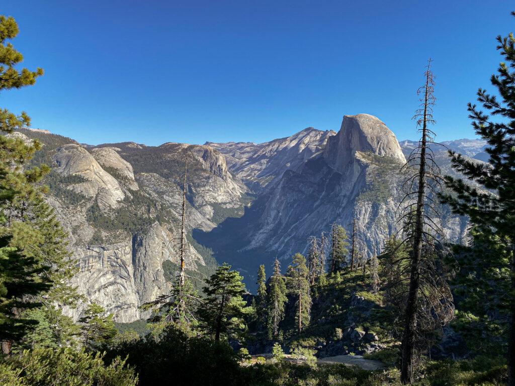 Wildlife reclaim Yosemite National Park