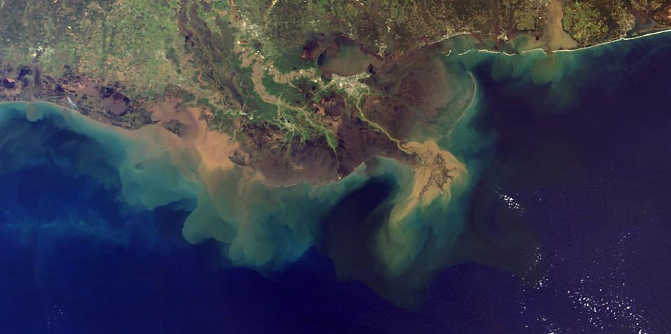 the gulf of mexico dead zone