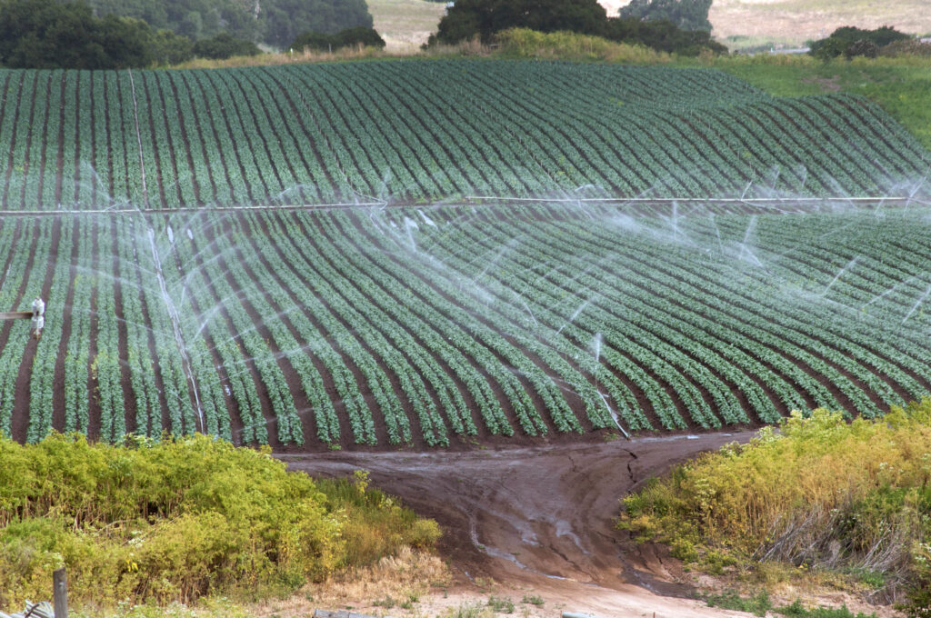 Climate change might force crops to move