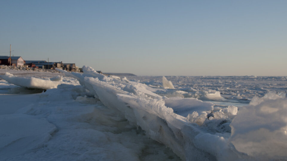 Bering Sea ice continues to shrink