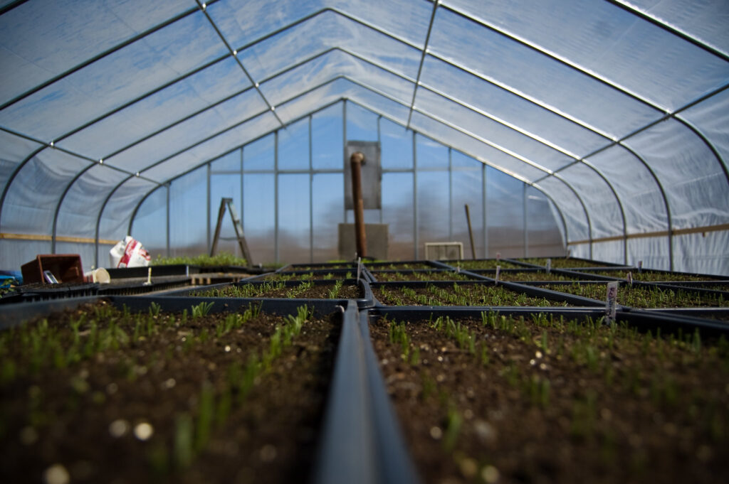 Using solar panel technology for greenhouses