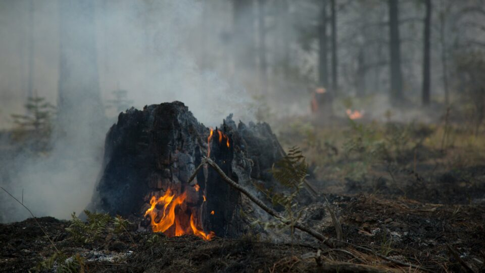Early detection of overwintering fires could help with fire management