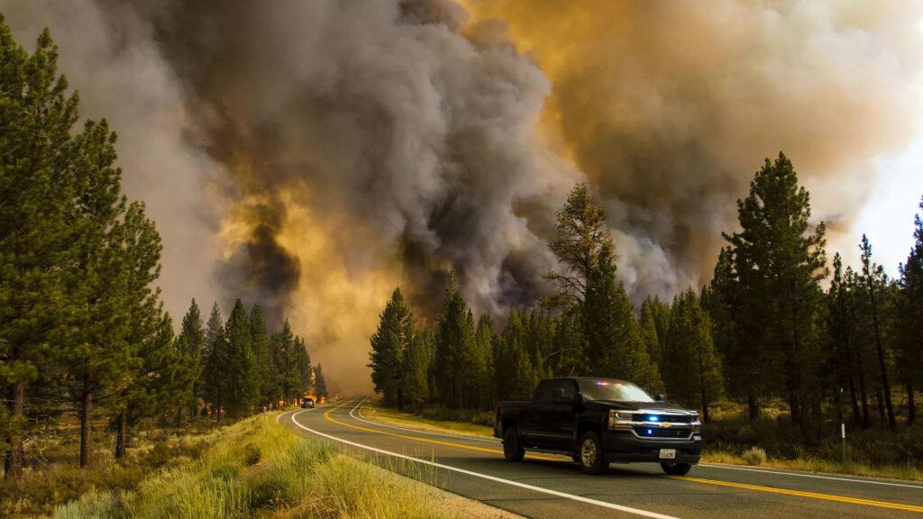 Wildfire smoke devastating some vineyards