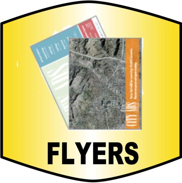 custom flyer printing burbank