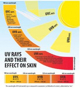 uv_ray_graphic_560w3-275x300