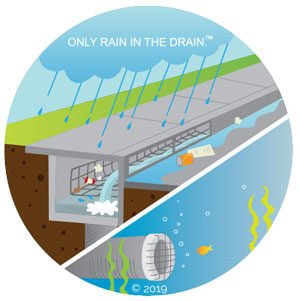 Only-rain-in-the-drain