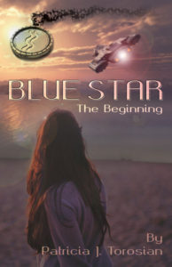 blue start the beginning book cover