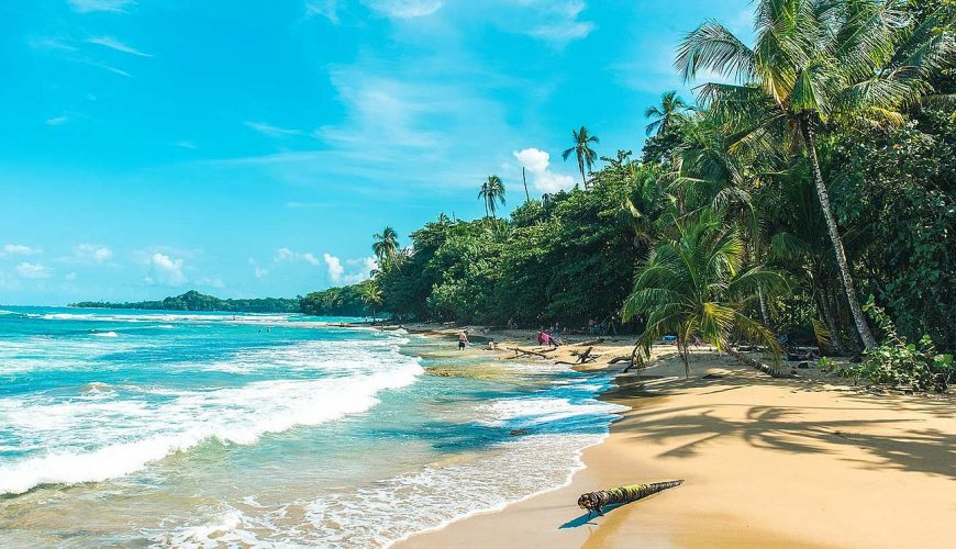 Tours From Puerto Viejo