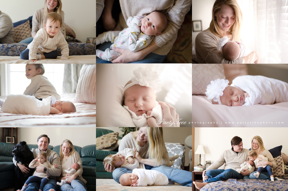 Johns Creek GA Alpharetta GA Cumming GA Lifestyle Newborn Photographer Party Tree Photography