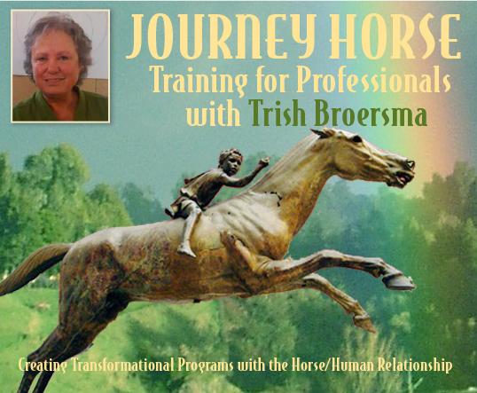Journey Horse Training: CO