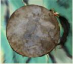 Her drum.