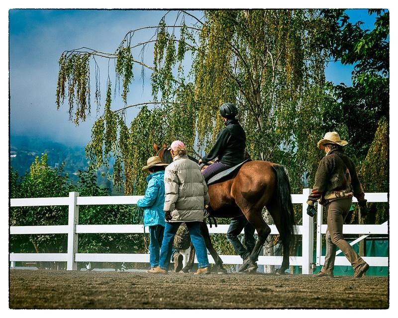 RidingBeyond-(ZF-2162-14328-1-001)