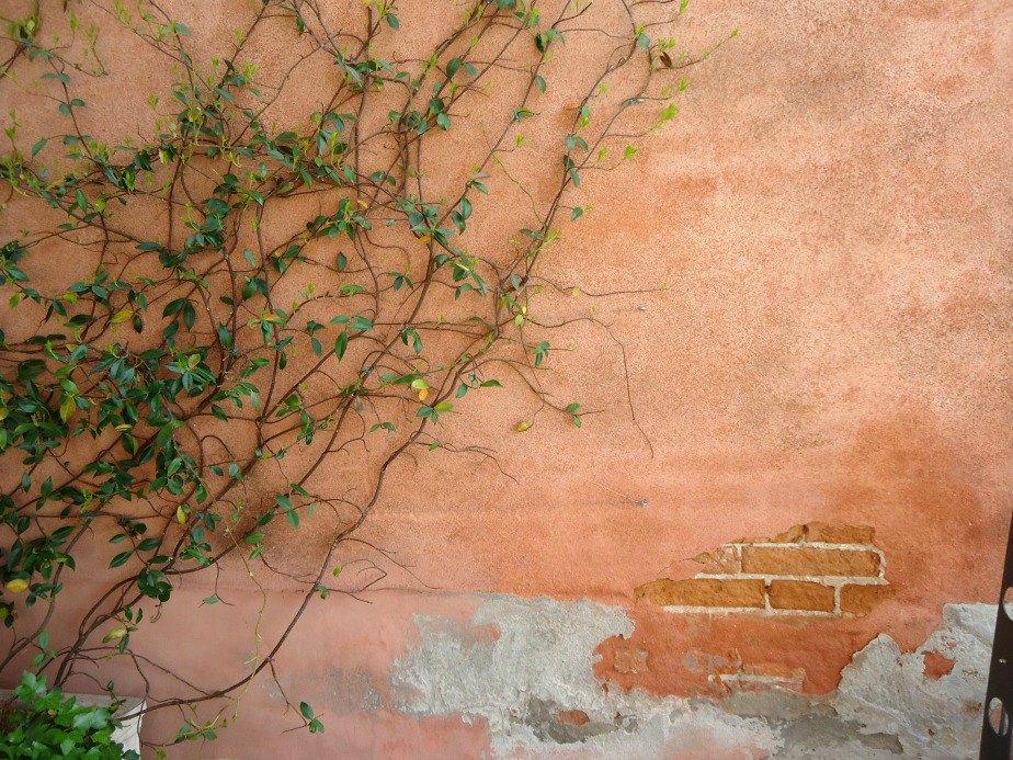 Image of Al Ponte Antico Hotel Terrace Wall Grand Canal Venice Italy