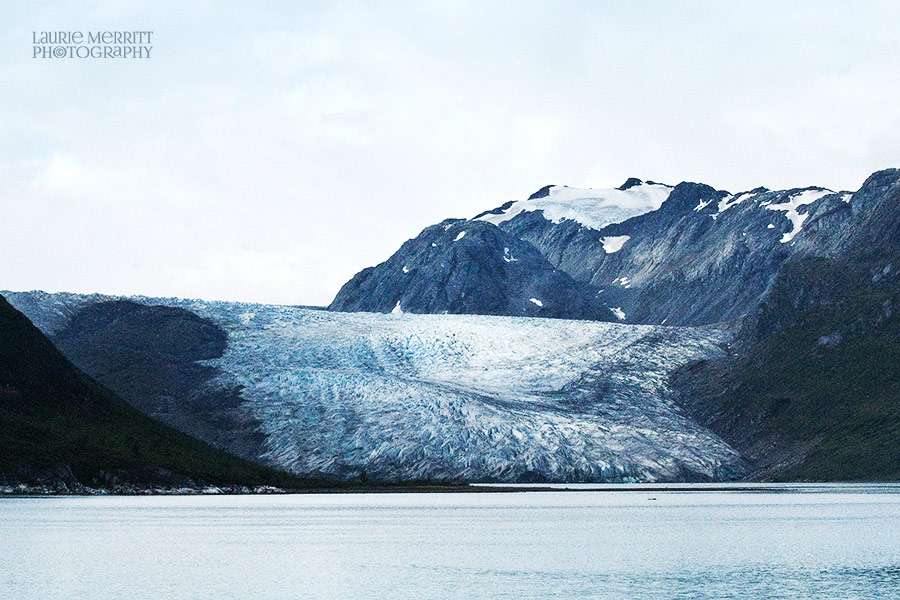 GlacierBay-0811_900