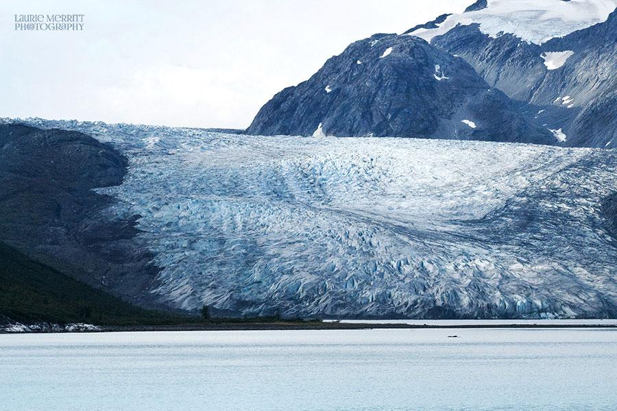 GlacierBay-0812_900