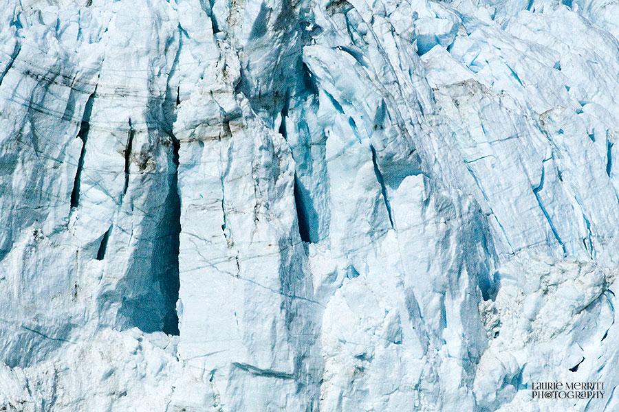 GlacierBay-0883_900