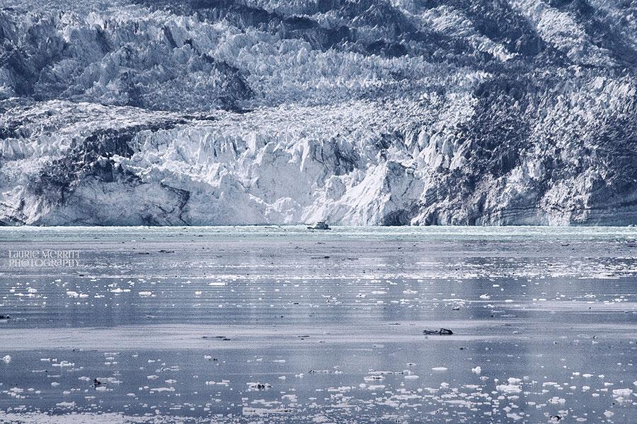 GlacierBay-0942_900