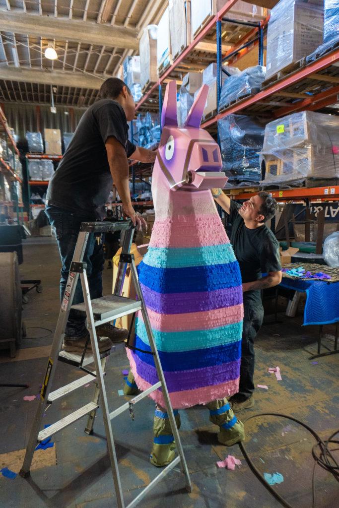 Lifesize Supply Llama