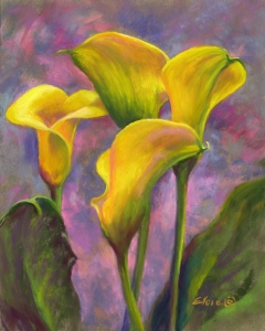 yellow-beauties-h-10x8-0566