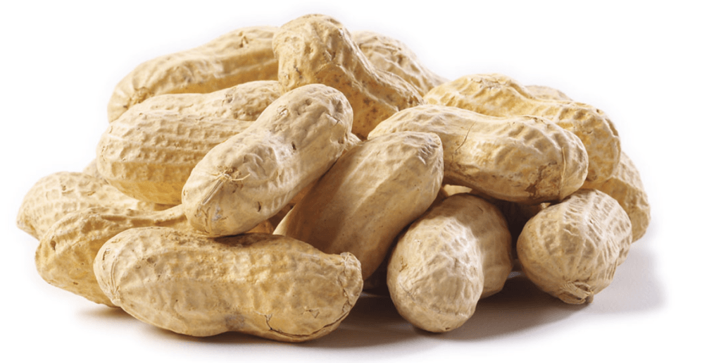 Info for Those with Peanut Allergy