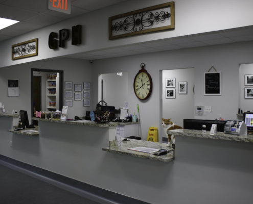 Glenwood Pet Hospital Reception Room