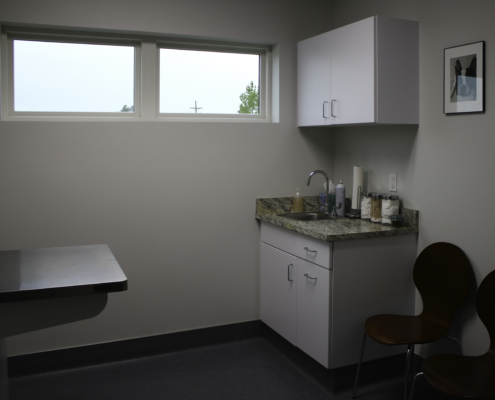 Glenwood Pet Hospital Exam Room