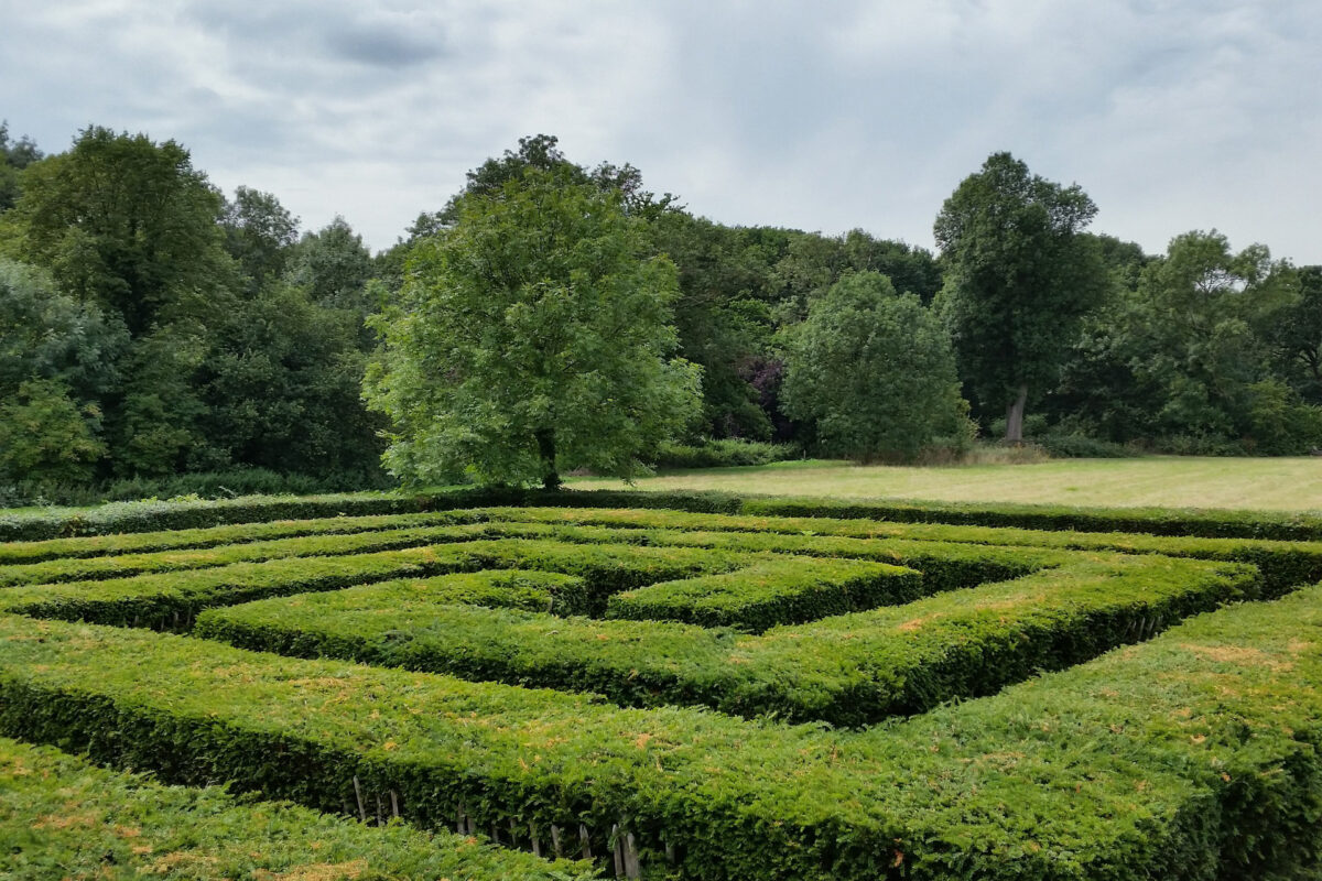maze solving issues