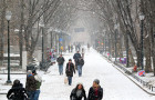 Penn's Snowcovered Locust Walk