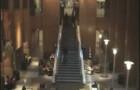 "Wharton on ""speed"" (cool video!)"