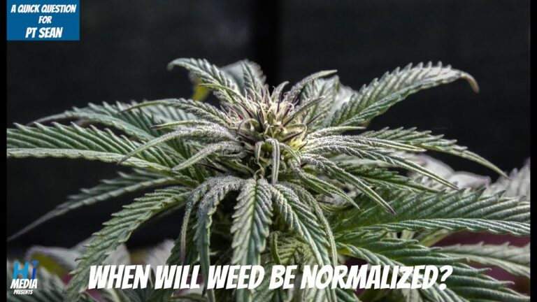 When Will Weed Be Normalized? – A Quick Question To PT Sean