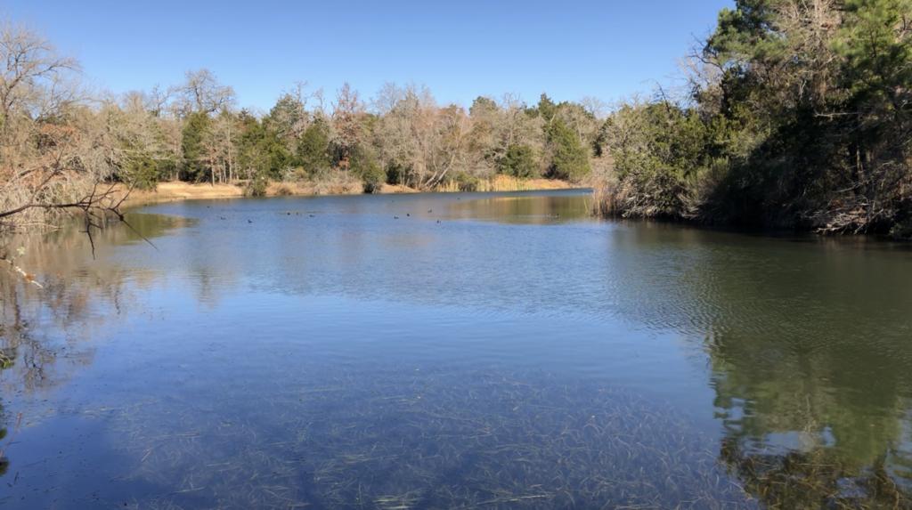 LCRA Park: Lake Bastrop South Shore Park