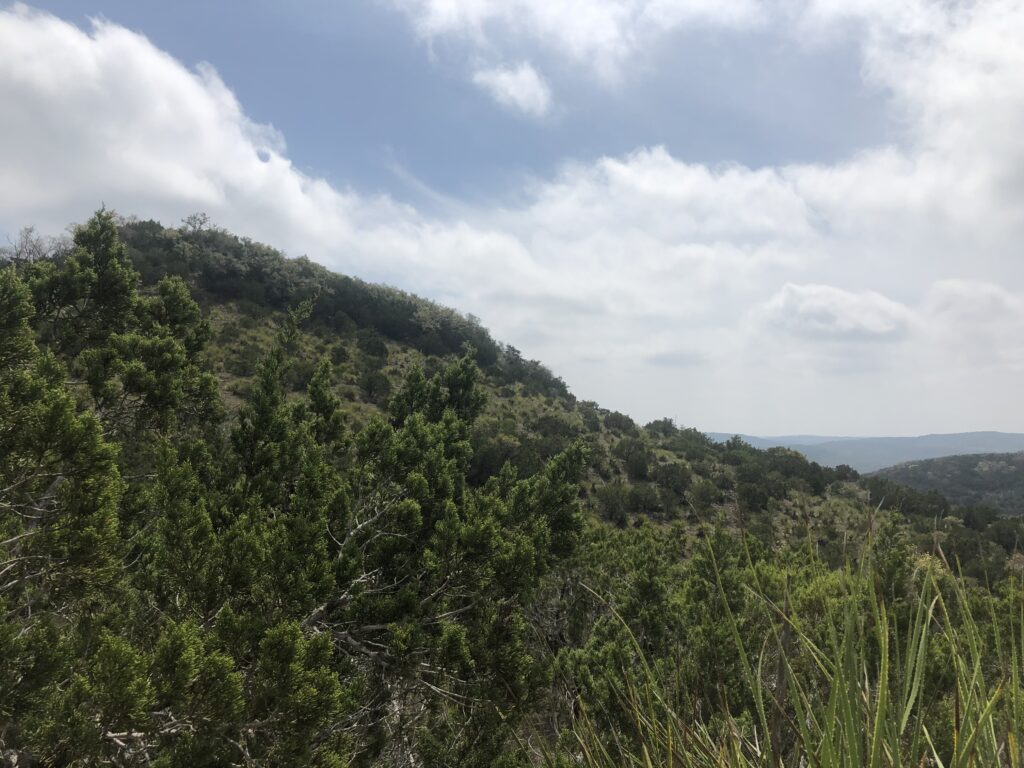 Hill Country State Natural Area
