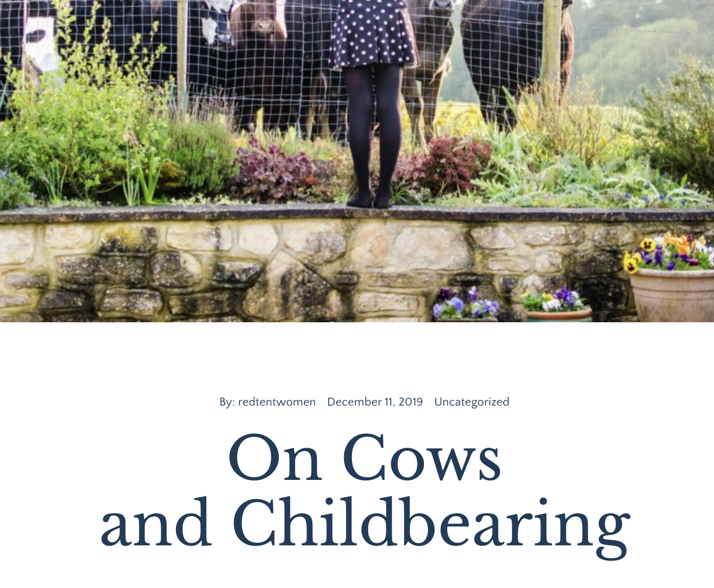 On Cows And Childbearing