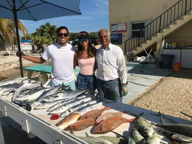 mackerel an snapper