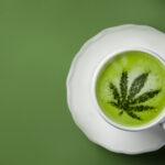 Cannabis, Matcha green tea