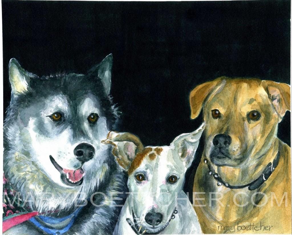 Julies Dogs