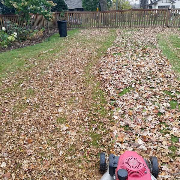 Fall Clean Up Keyser West Virginia