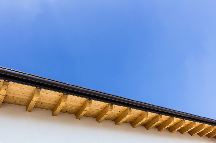 Signs of Rotting Fascia