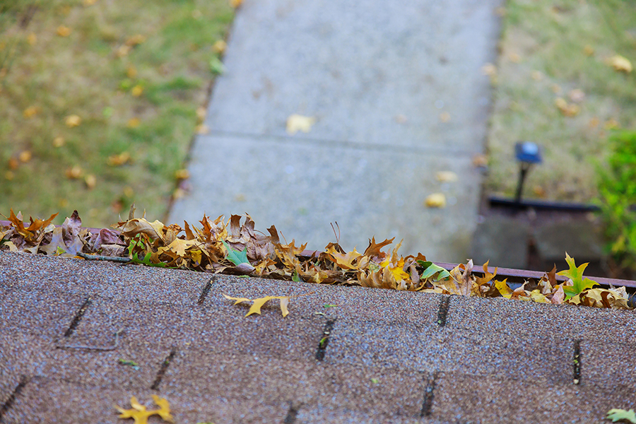 4 Reasons To Clean Your Gutters Today