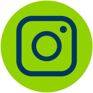 Liondrive instagram
