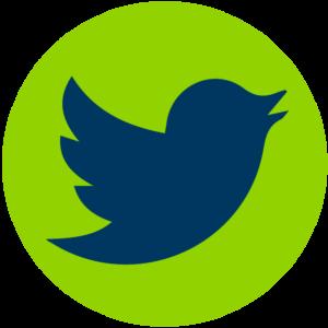Liondrive Twitter