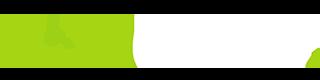 Liondrive Logo