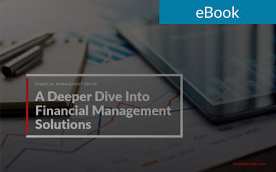 A Deeper Dive Into Financial Management Solutions