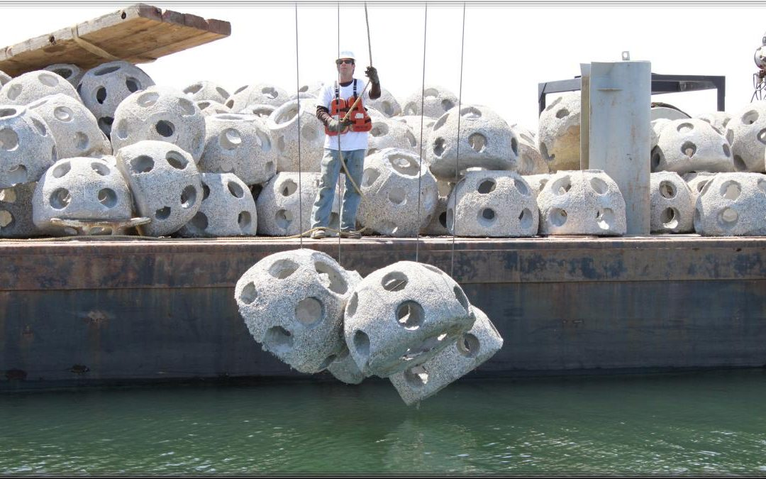 Bay Balls